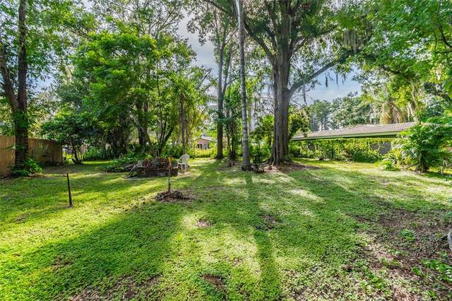 19121 Alice Circle, Lutz, FL 33558 (MLS #T3319855) :: Realty Executives