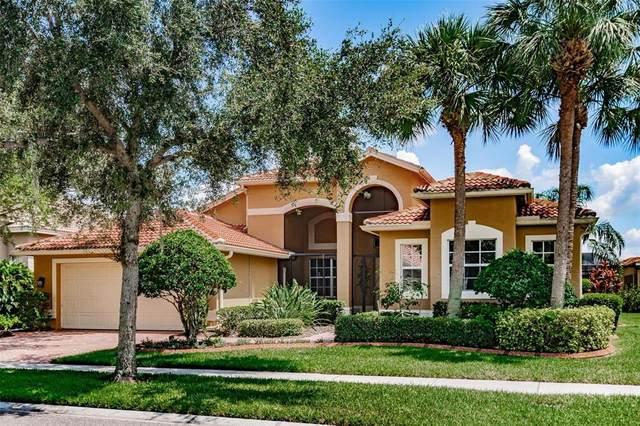 5005 Ruby Flats Drive, Wimauma, FL 33598 (MLS #T3319872) :: Young Real Estate