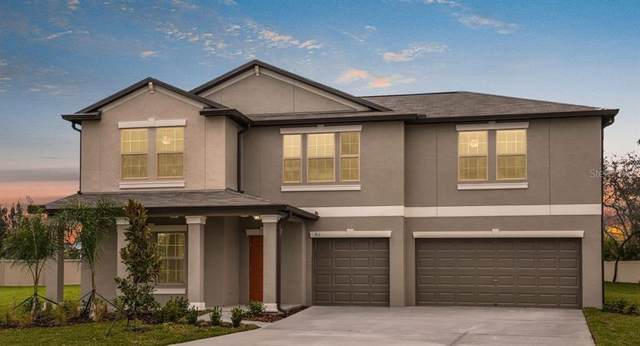 1812 Silver Star Place, Ruskin, FL 33570 (MLS #T3319876) :: Zarghami Group