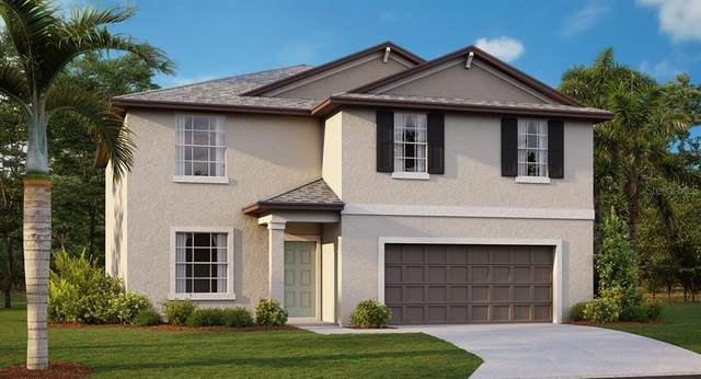 1832 Crinkle Leaf Court, Ruskin, FL 33570 (MLS #T3319879) :: Aybar Homes