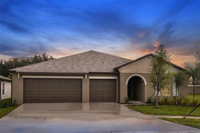 10705 Sage Canyon Drive, Riverview, FL 33578 (MLS #T3319912) :: Vacasa Real Estate