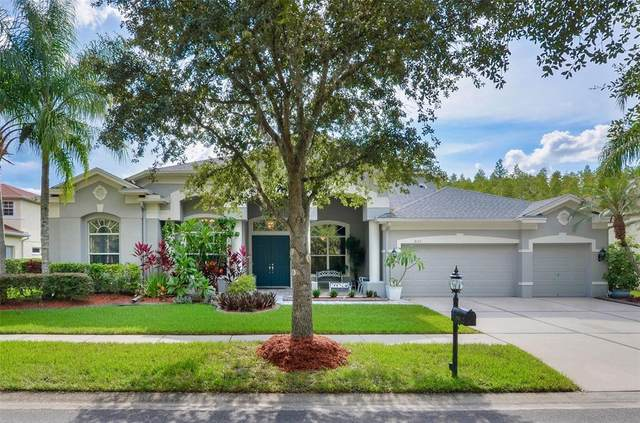18122 Emerald Bay Street, Tampa, FL 33647 (MLS #T3319959) :: Medway Realty