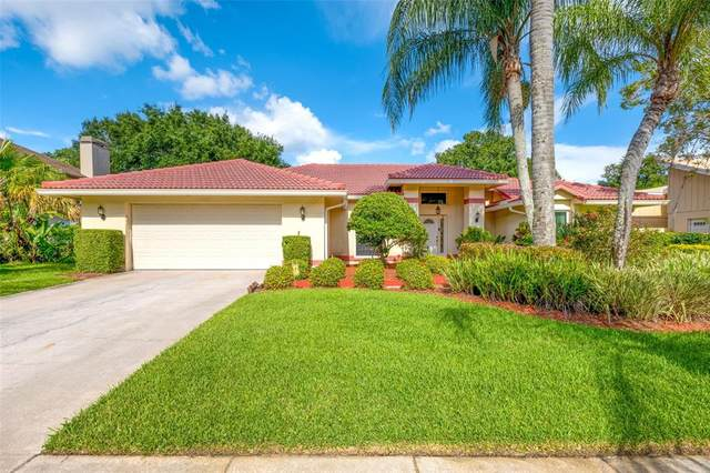 12909 Cinnimon Place, Tampa, FL 33624 (MLS #T3319975) :: The Hustle and Heart Group