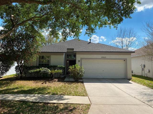 19263 Wood Sage Drive, Tampa, FL 33647 (MLS #T3319988) :: Medway Realty