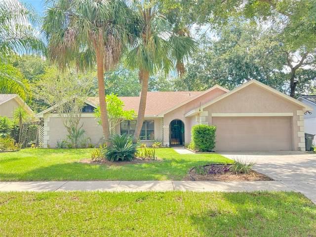 1705 Tallowtree Circle, Valrico, FL 33594 (MLS #T3320004) :: Dalton Wade Real Estate Group