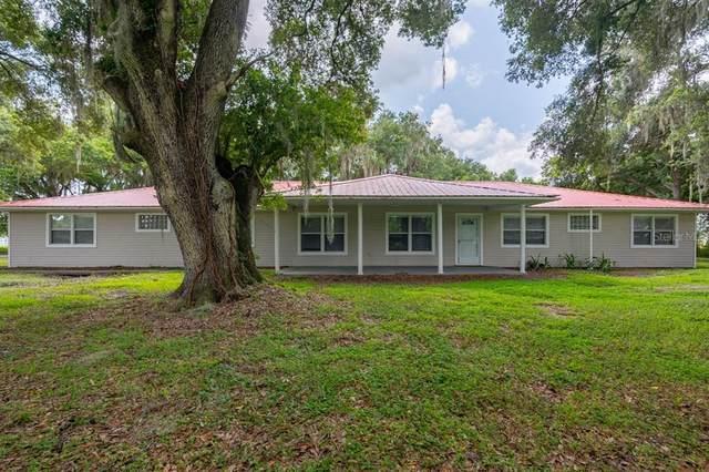 8601 Paul Buchman Highway, Plant City, FL 33565 (MLS #T3320009) :: Prestige Home Realty