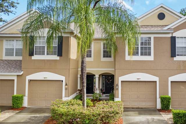 6611 Shining Sun Court, Tampa, FL 33634 (MLS #T3320010) :: Realty Executives