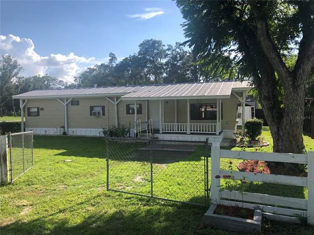 1413 Faye Avenue, Lakeland, FL 33803 (MLS #T3320022) :: Tuscawilla Realty, Inc