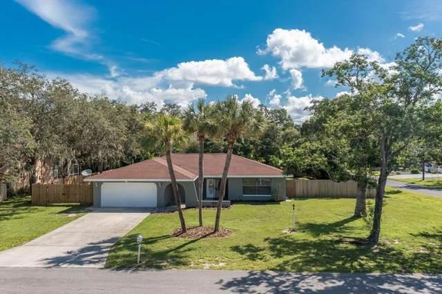 6339 Jamaica Road, Spring Hill, FL 34606 (MLS #T3320030) :: Prestige Home Realty