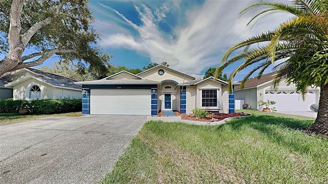 13530 Bellingham Drive, Tampa, FL 33625 (MLS #T3320032) :: Vacasa Real Estate