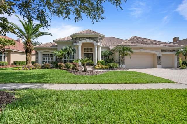 9906 Tree Tops Lake Road, Tampa, FL 33626 (MLS #T3320035) :: Dalton Wade Real Estate Group