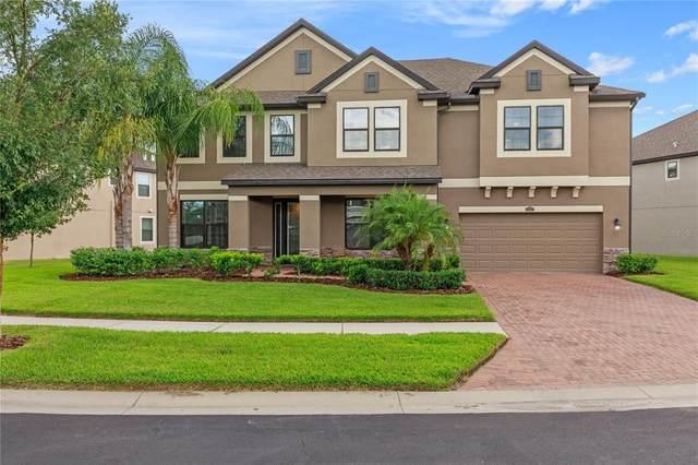 13204 Sunset Shore Circle, Riverview, FL 33579 (MLS #T3320042) :: Zarghami Group