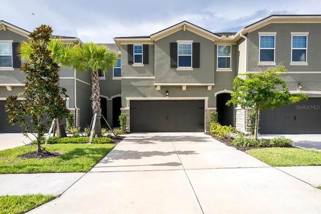 5712 Grand Sonata Avenue, Lutz, FL 33558 (MLS #T3320058) :: Alpha Equity Team