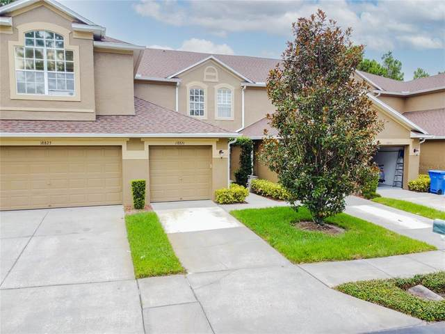 18821 Duquesne Drive, Tampa, FL 33647 (MLS #T3320061) :: Medway Realty