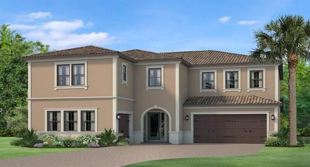 18208 Pine Hammock Boulevard, Lutz, FL 33548 (MLS #T3320064) :: Zarghami Group