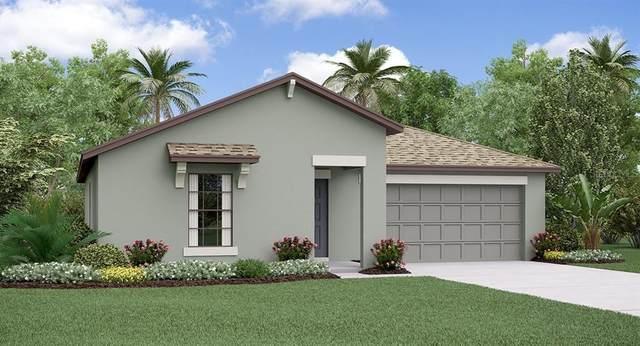 1032 Anchor Bend Drive, Ruskin, FL 33570 (MLS #T3320069) :: Dalton Wade Real Estate Group