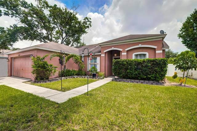15009 Trail Creek Place, Tampa, FL 33625 (MLS #T3320076) :: Zarghami Group
