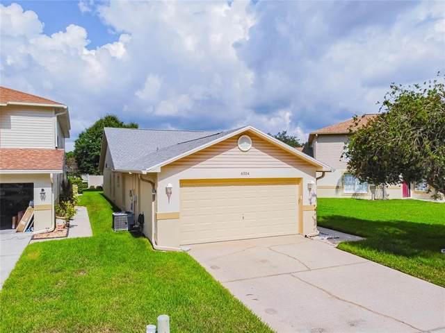 6554 Gentle Ben Circle, Wesley Chapel, FL 33544 (MLS #T3320095) :: Gate Arty & the Group - Keller Williams Realty Smart