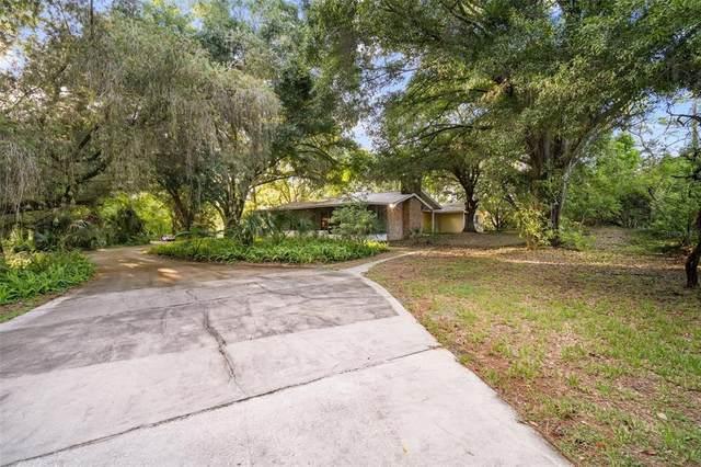 551 George Street N, Tarpon Springs, FL 34688 (MLS #T3320096) :: Zarghami Group