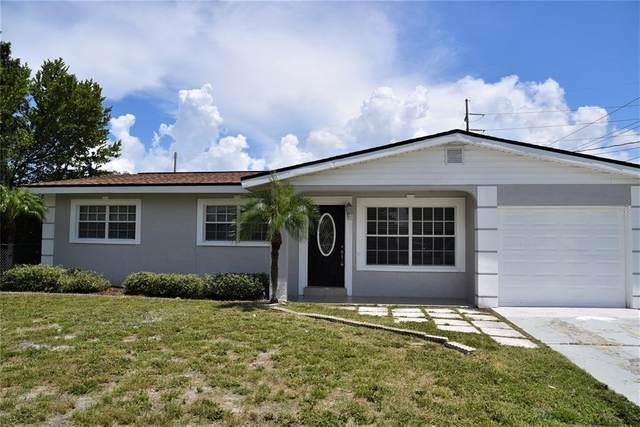 3601 W Oklahoma Avenue, Tampa, FL 33611 (MLS #T3320101) :: Stellar Home Sales