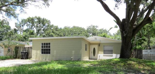 6911 Dimarco Road, Tampa, FL 33634 (MLS #T3320104) :: Medway Realty
