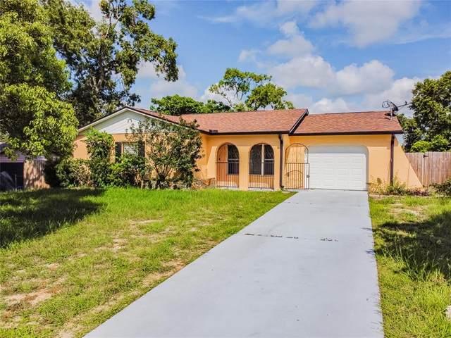 6318 Covewood Drive, Spring Hill, FL 34609 (MLS #T3320116) :: Vacasa Real Estate