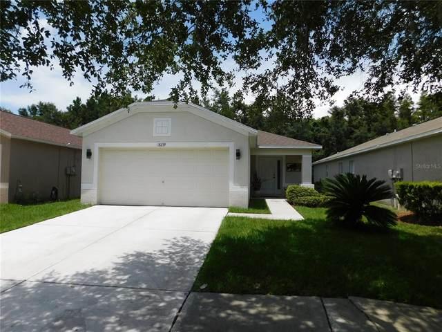 18239 Portside Street, Tampa, FL 33647 (MLS #T3320133) :: Medway Realty