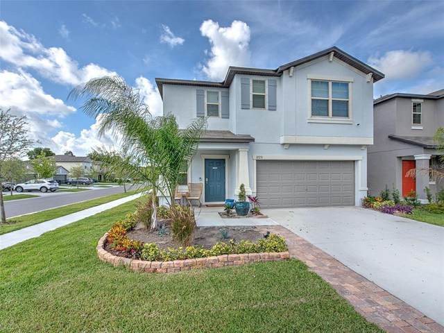 10231 White Linen Avenue, Riverview, FL 33578 (MLS #T3320139) :: Pristine Properties