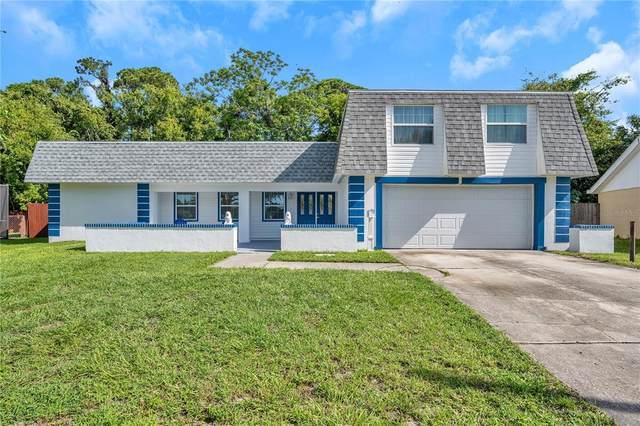 4005 Woodsville Drive, New Port Richey, FL 34652 (MLS #T3320142) :: Prestige Home Realty