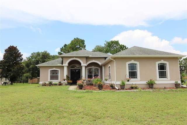 14706 Copeland Way, Spring Hill, FL 34604 (MLS #T3320143) :: Keller Williams Realty Select