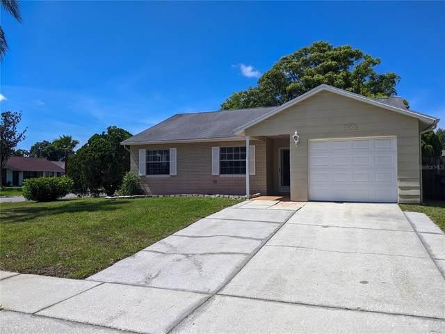 7819 Adelaide Loop, New Port Richey, FL 34655 (MLS #T3320145) :: Vacasa Real Estate