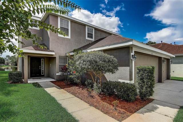 20521 Sultana Court, Tampa, FL 33647 (MLS #T3320155) :: Medway Realty