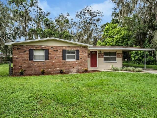 205 Larson Avenue, Brandon, FL 33510 (MLS #T3320161) :: Zarghami Group