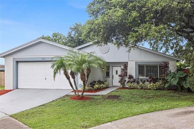 4811 Cypress Ridge Place, Tampa, FL 33624 (MLS #T3320165) :: Realty Executives