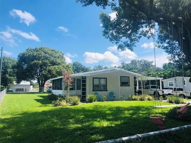 29601 Benjamin Drive, Wesley Chapel, FL 33543 (MLS #T3320189) :: Zarghami Group