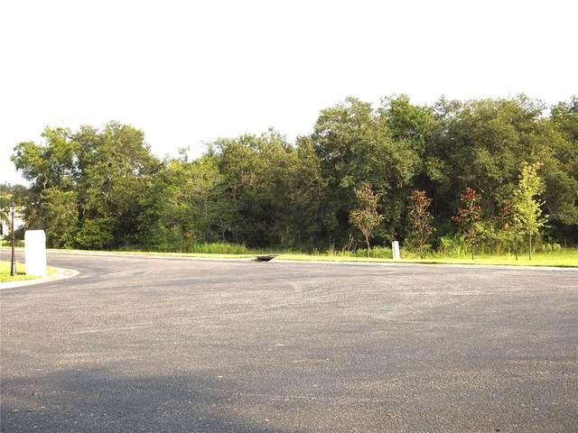 6805 Luana Lane, Seffner, FL 33584 (MLS #T3320191) :: Prestige Home Realty