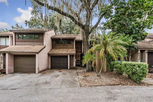 6020 River Trace Road, Tampa, FL 33617 (MLS #T3320194) :: Kelli and Audrey at RE/MAX Tropical Sands