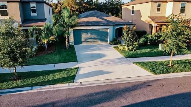 5131 Sable Chime Drive, Wimauma, FL 33598 (MLS #T3320197) :: Zarghami Group