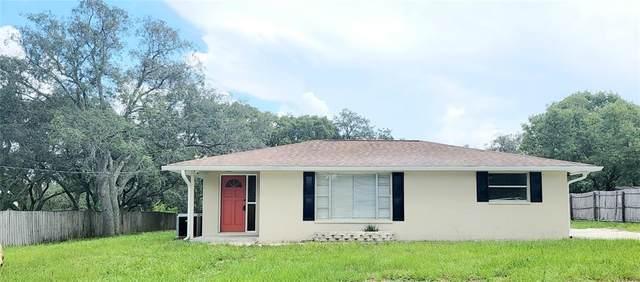 9611 Fargo Drive, Hudson, FL 34667 (MLS #T3320217) :: Memory Hopkins Real Estate