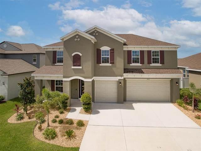 11803 Sunburst Marble Road, Riverview, FL 33579 (MLS #T3320218) :: Zarghami Group
