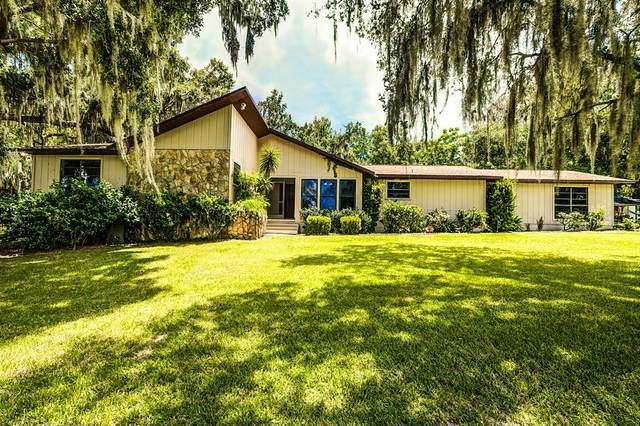 4450 Spring Lake Highway, Brooksville, FL 34601 (MLS #T3320223) :: Zarghami Group