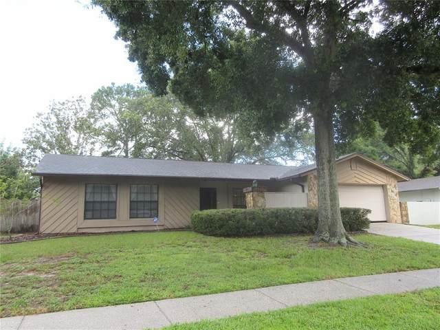 7915 River Ridge Drive, Temple Terrace, FL 33637 (MLS #T3320231) :: Zarghami Group