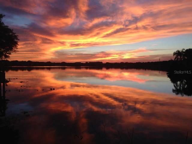 911 S Bayshore Boulevard, Safety Harbor, FL 34695 (MLS #T3320242) :: Charles Rutenberg Realty