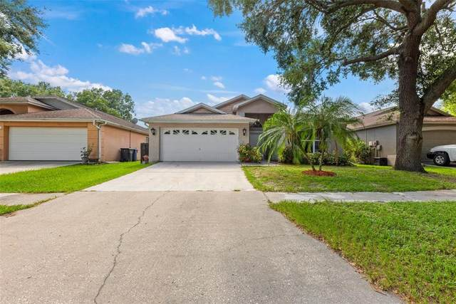 10839 Peppersong Drive, Riverview, FL 33578 (MLS #T3320274) :: Zarghami Group