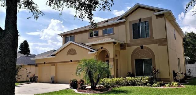 4236 Balington Drive, Valrico, FL 33596 (MLS #T3320281) :: Team Turner