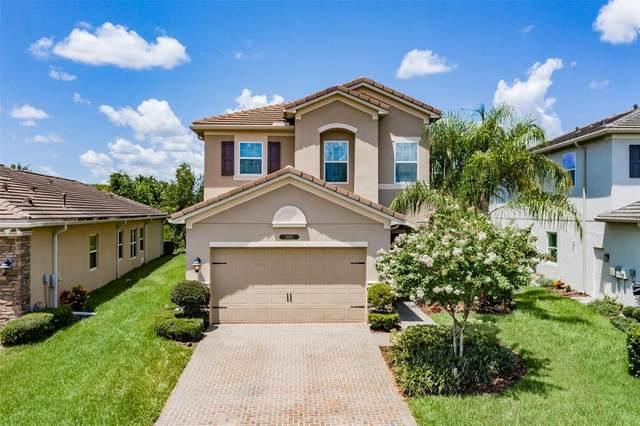 2691 Tarragona Way, Wesley Chapel, FL 33543 (MLS #T3320287) :: Vacasa Real Estate