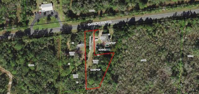 645 S Log Haven Point #4, Crystal River, FL 34429 (MLS #T3320302) :: Team Turner