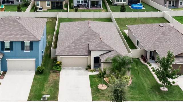 9724 Sage Creek Drive, Ruskin, FL 33573 (#T3320303) :: Caine Luxury Team