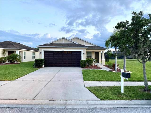 4253 Warwick Hills Drive, Wesley Chapel, FL 33543 (MLS #T3320335) :: Zarghami Group