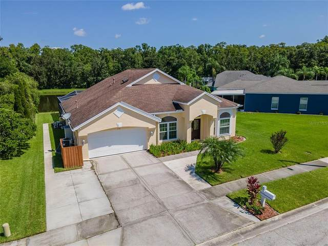1738 Tangledvine Drive, Wesley Chapel, FL 33543 (MLS #T3320352) :: The Light Team